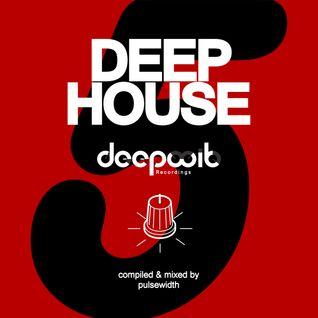 Deep House Label Showcase: DeepWit Recordings #5