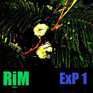 RiM Record Label - ExP.1