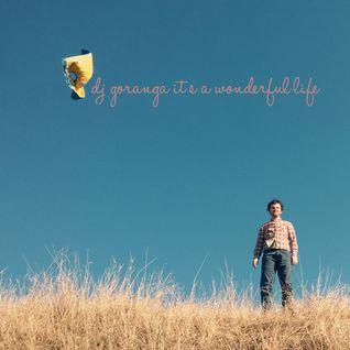 Dj goranga - It's a wonderful life