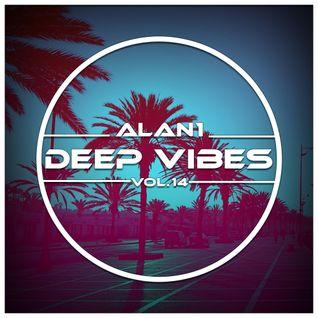 Deep Vibes Vol.14
