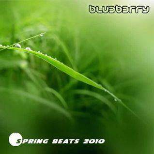 Blu3b3rry - Spring beats 2010