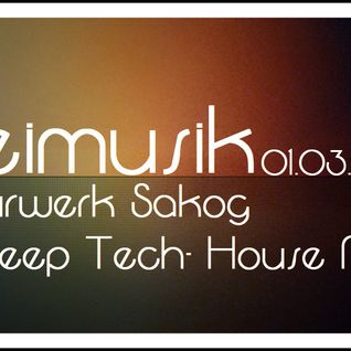 Freimusik @ Kulturwerk Sakog 01.03.2013 Deep Tech-House
