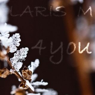 LARIS M - 4you (2011)