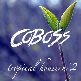 Tropical House n°2 (JANUARY 2016) Mixed by COBOSS #Podcast