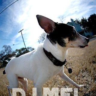 DJ Mel - The Funky Terrier