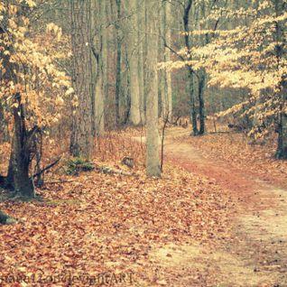 Hidden Paths Vol.2 (December 2012 Mix)