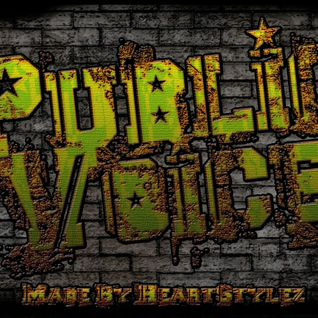 Public Voice - Episode #8
