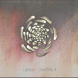 Tunesday Journeys no. 24 - Calibre Shelflife 4 Showcase mix Live on Different Drumz [26-02-16]