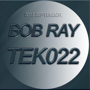 TEK 022