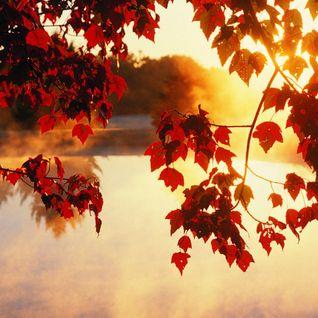 The sun in September