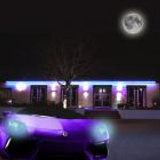 With Purple Lamborghini 2 The Next Dimension