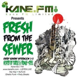 Fresh From The Sewer Guest Mix - Kane FM