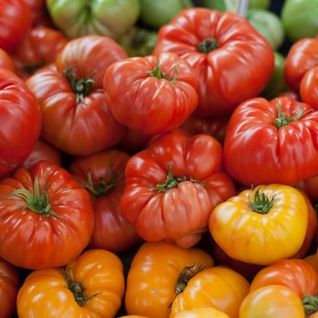 590: Heirlooms and Hybrids