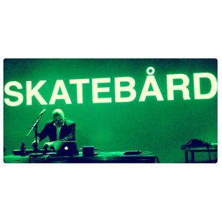Skatebård presents Transilvanian Galaxi  - LIVE at EKKO