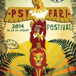 The Bassix - Psyfari 2014