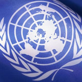 Business, human rights and the UN