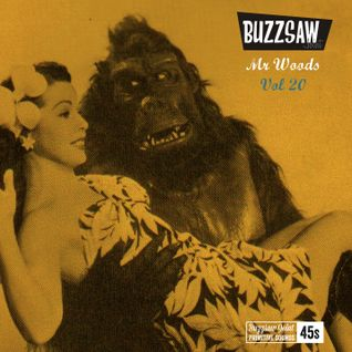 Buzzsaw Joint Vol 20  (Mr Woods)