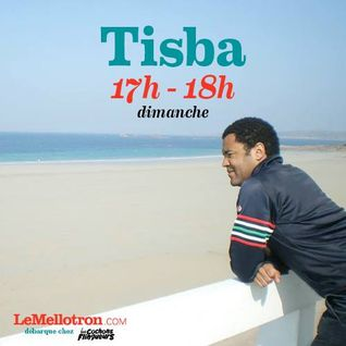 Tisba • Les Cochons Flingueurs 2016 • LeMellotron.com