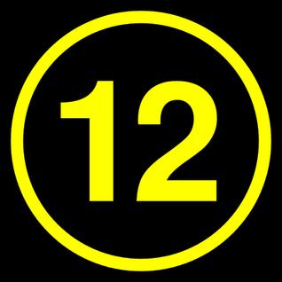 Skitzophonic #12 (XL)