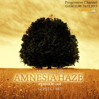 CJ Art - Amnesia Haze 008 Guest Mix (14.11.2013) on Pure FM