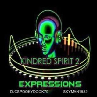 Kindred Spirit 2 - Expressions - A Connected Collaboration