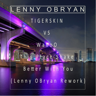Tigerskin Vs Wahoo - This Place Shake Better With You (Lenny OBryan Rework)