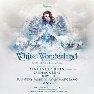 Armim van Buuren - Live @ White Wonderland 2014 - 31.12.2014