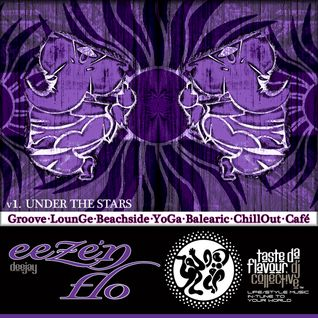 DJ EEZE 'N FLO : Under the Stars : Mix Session Volume 1 : Taste Da Flavour DJ Collective