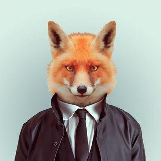 Denim Fox-Level up 2k13 (set)