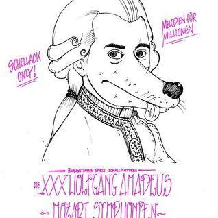 XXXWolfgang Amadeus Mozart Mix - Melodien für Million€n