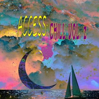 FUNKY HONKY PRESENTS ACCESS: CHILL VOL.2