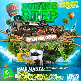 Miss Mants - Breaks Step Open Air 2015 (Live)