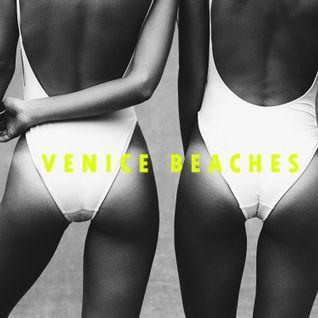 SUMMER VIBES: VENICE BEACHES