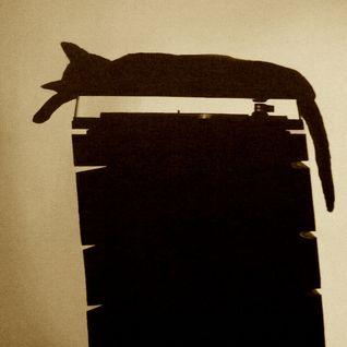 Zé Mateo (Chinese man) - Cat is a cat