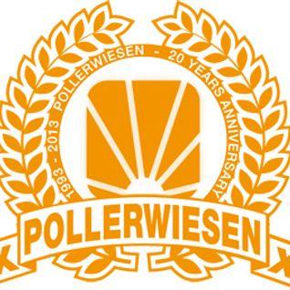 Pollerwiesen Festival 2.0 Contest (2013)
