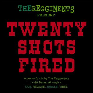 TWENTY SHOTS FIRED