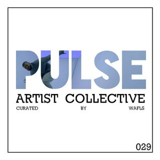 Pulsecast Episode 029 - Curated by WAFLS