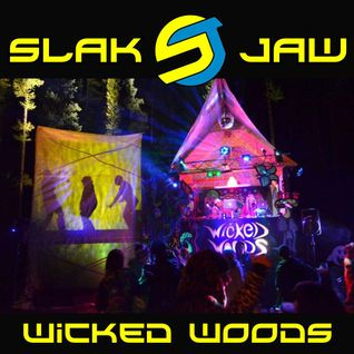 Wicked Woods 2012 (Live)