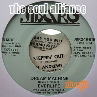 The Soul Alliance: Vinyl Alliance Vol.15 (Rare 6)