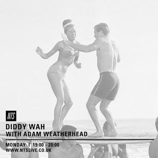 Diddy Wah w/ Adam Weatherhead - 13th July 2015