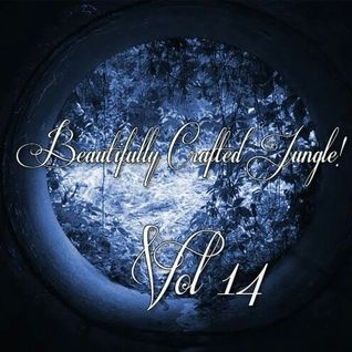 DJ Monita - Beautifully Crafted Jungle Volume 14