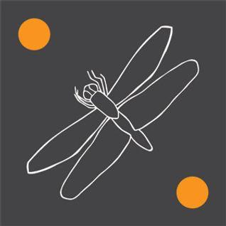 Debuger Podcast 001 - DJ GrujA