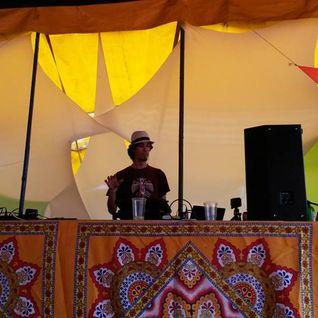 Dj Sandro - Ozora Festival 2014 (Pumpui Stage)