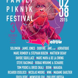 David Squillace - live at Family Piknik 2015, France - 12-Jul-2015