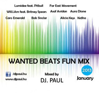 Wanted Beats Fun Mix 2013 January Mixed By Dj. Paul