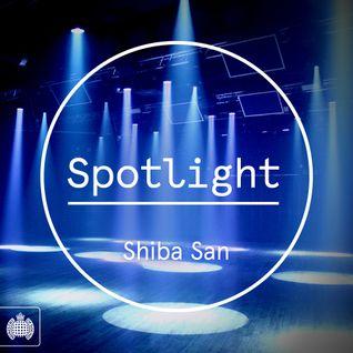 Spotlight 001: Shiba San