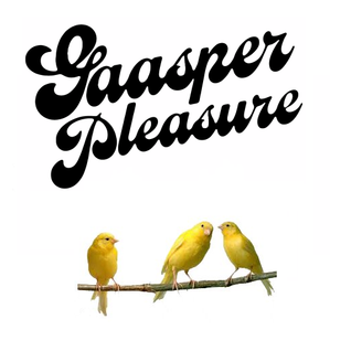 Riso @ Gaasper Pleasure 2014 (mainstage)