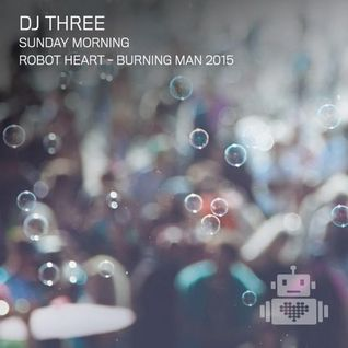 DJ Three – Robot Heart - Burning Man 2015