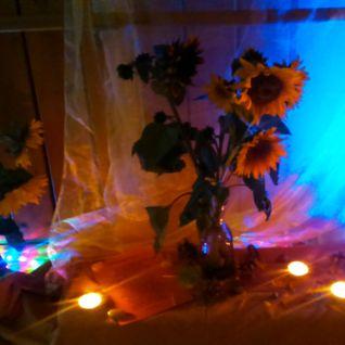 GeburtstagsWave von Birgit in Botnang September 2016