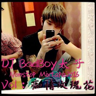 DJ Badboy Nonstop Mixtape 2016 Vol 8:( 痴情玫瑰花 )